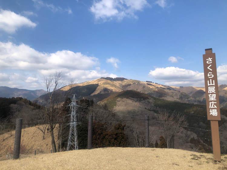 山北つぶらの公園にあるさくら広場から見える大野山