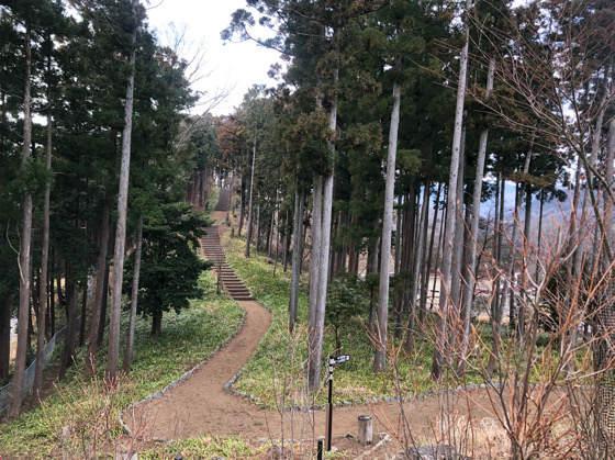 山北つぶらの公園にある紅葉の小道