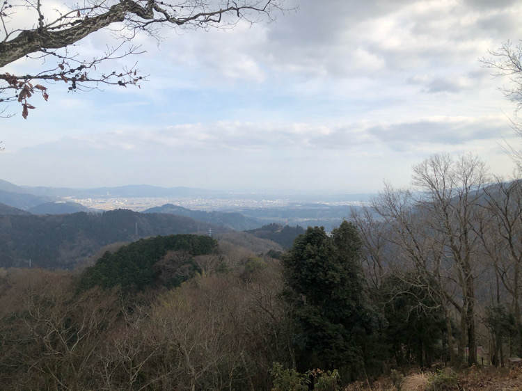 山北つぶらの公園のつつじ山展望広場から見える足柄平野などの景色