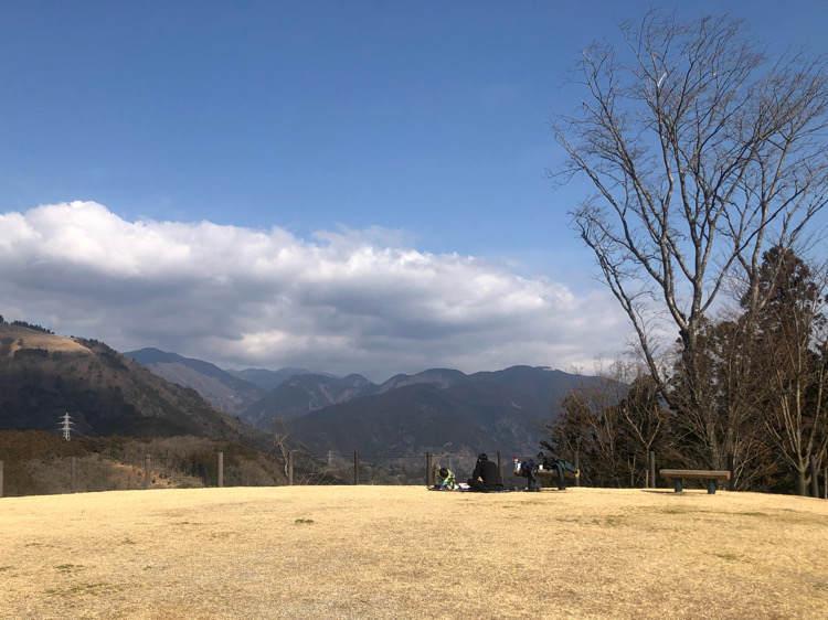 山北つぶらの公園のさくら広場でのランチ風景