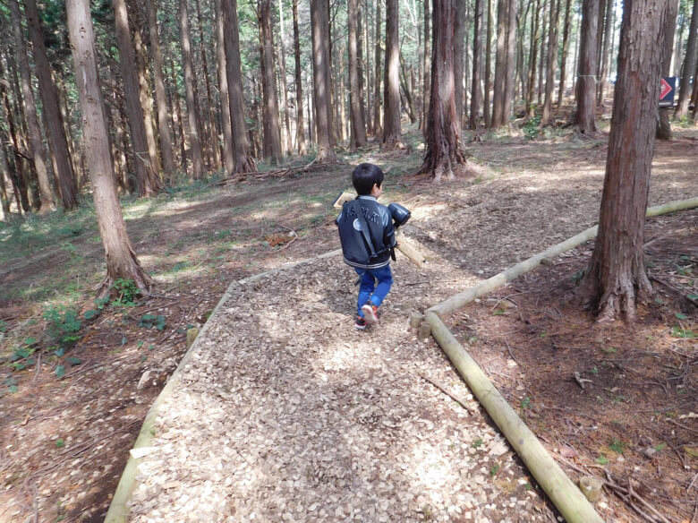 三島スカイウォークにある恐竜アドベンチャーで森の中を歩く子ども