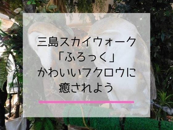 フクロウと触れ合える三島スカイウォークのふろっくの体験談記事のアイキャッチ画像