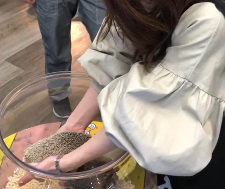 フクロウと触れ合える三島スカイウォークのふろっくではりねずみを触る女性