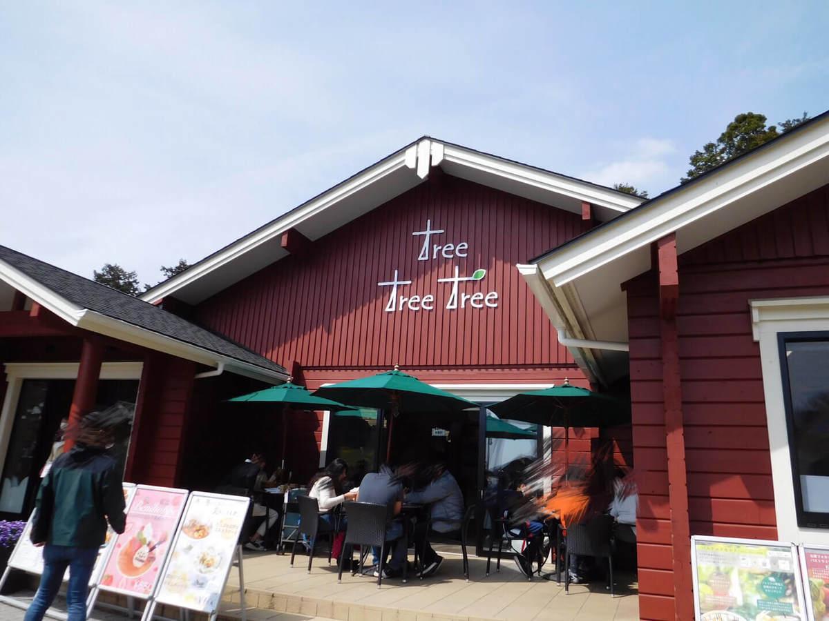 三島スカイウォークのピクニックカフェの外観