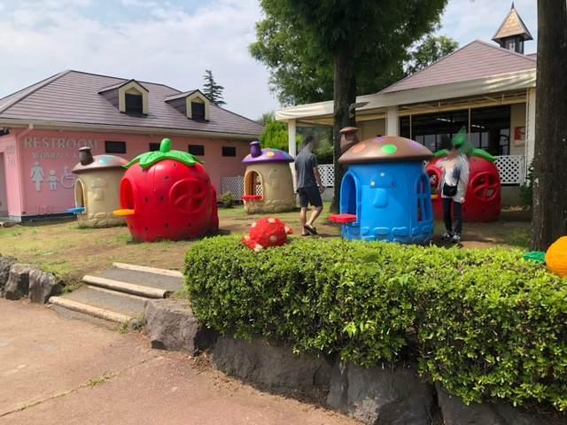伊豆ぐらんぱる公園にある子ども向け遊具