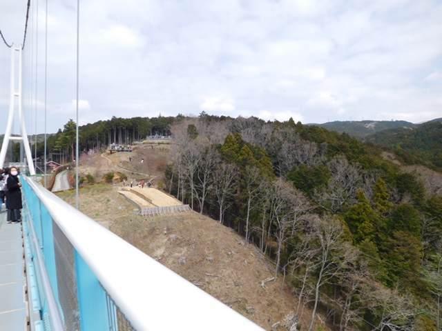三島スカイウォークのロングジップスライド