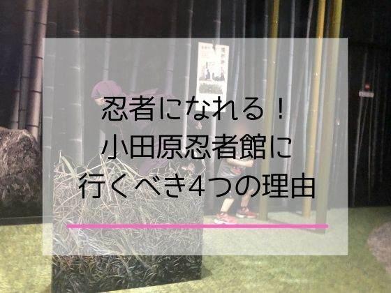 小田原忍者館に子連れで遊びにいったときの詳細レポート
