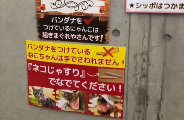 箱根園「どうぶつランドだっこして!ZOO!」の壁に貼ってある注意書き