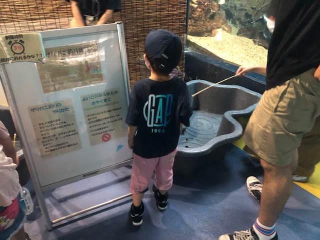 箱根園水族館のザリガニ釣り