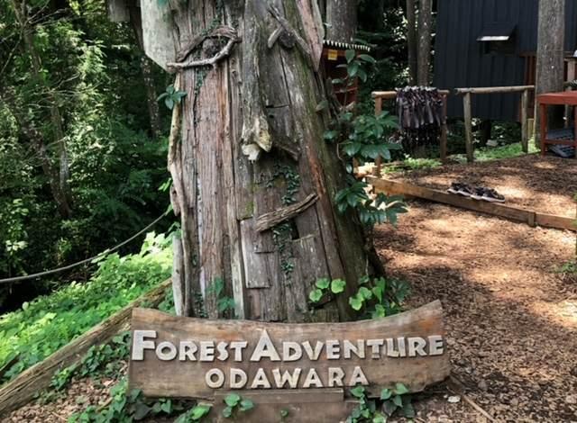 フォレストアドベンチャー小田原にある看板が立てかけてある木