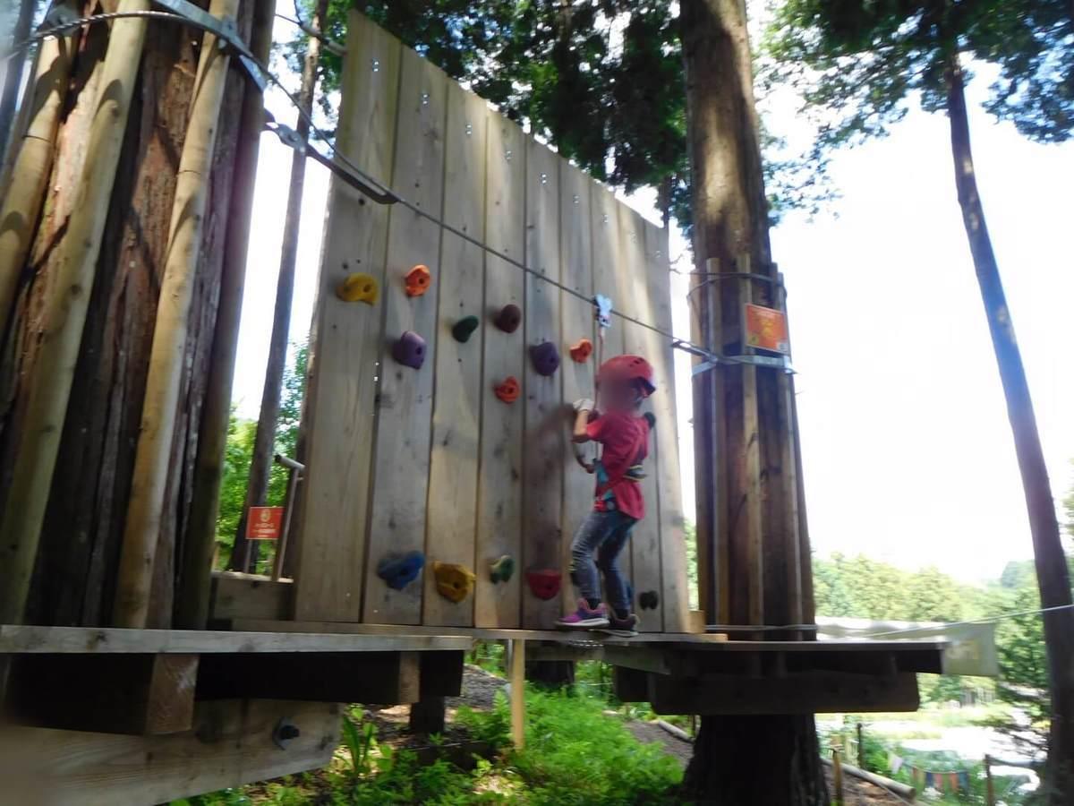 フォレストアドベンチャー小田原のキッズコースでボルダリングを楽しむ子供