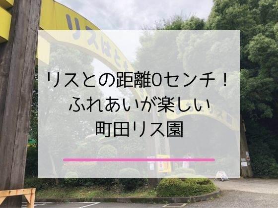 町田リス園の体験レポとランチ情報の記事のアイキャッチ画像