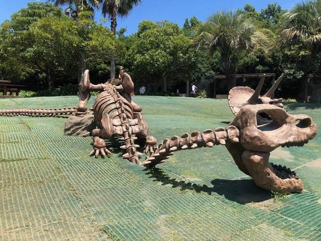 ズーラシアにある恐竜の遊具