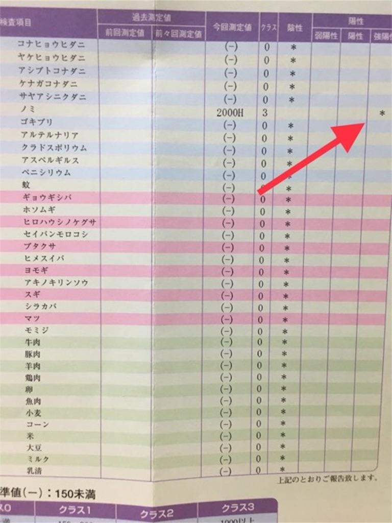 f:id:mitsu5858:20190523214758j:image