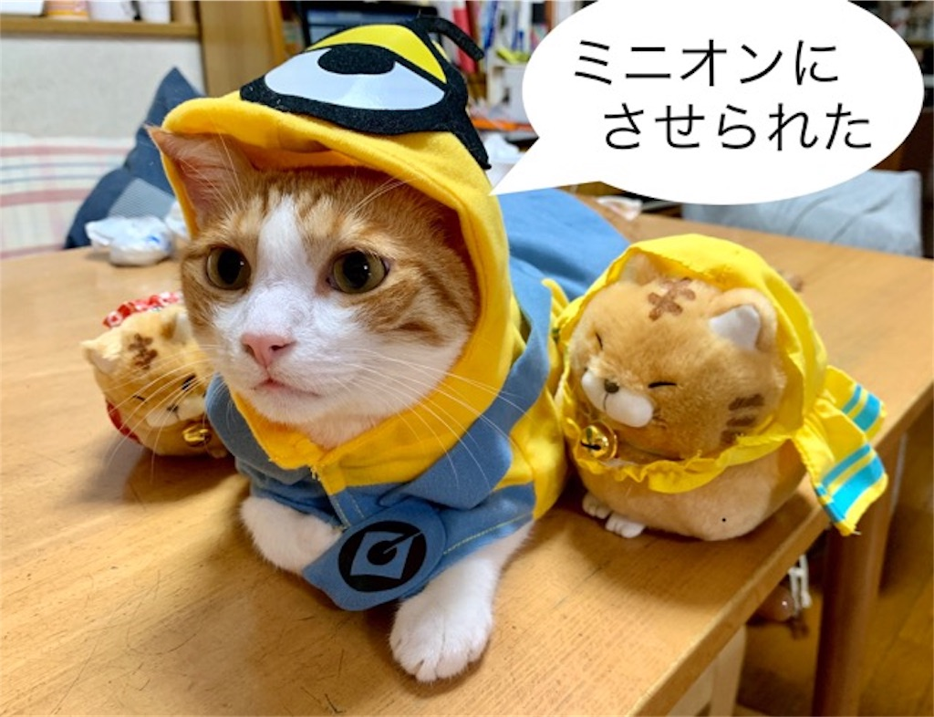 f:id:mitsu5858:20190808162238j:image