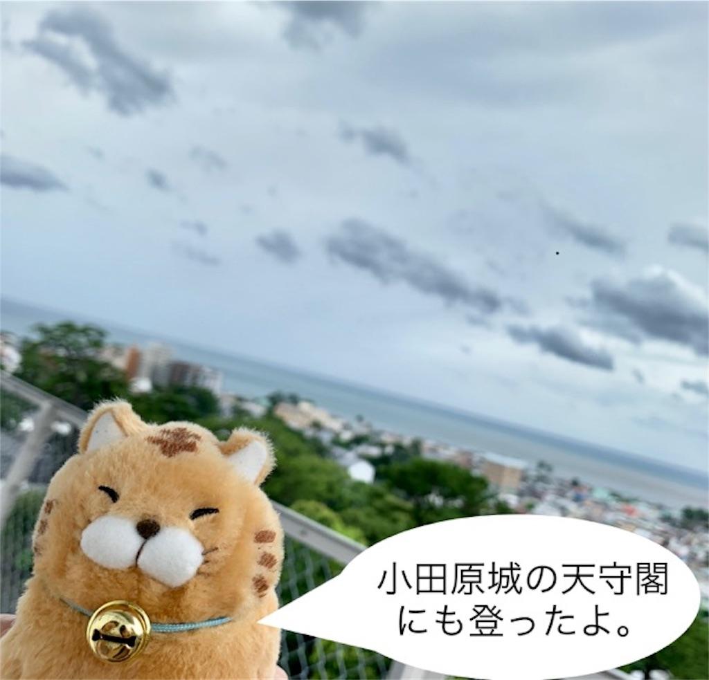 f:id:mitsu5858:20190901102356j:image
