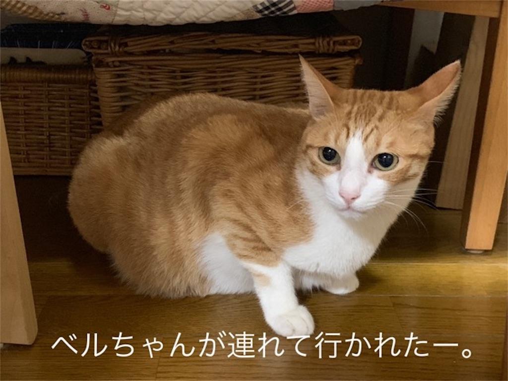 f:id:mitsu5858:20190906215905j:image