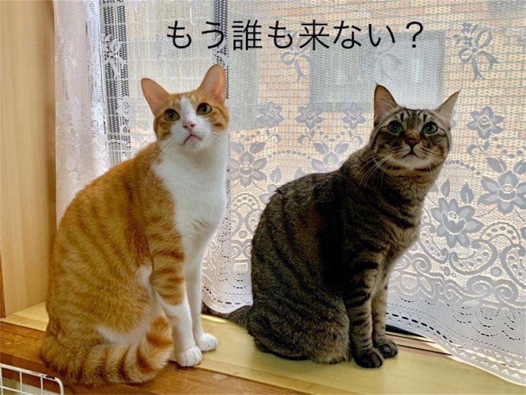 f:id:mitsu5858:20190926113616j:image