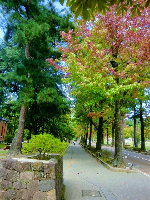 金沢を散策