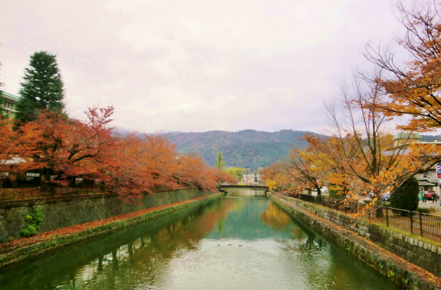 京都の紅葉おすすめルート