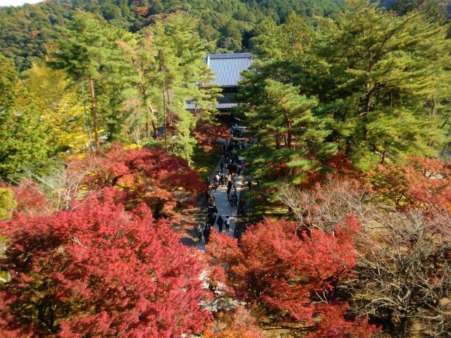 南禅寺の山門からの景色