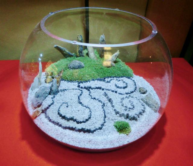 圓光寺の苔リウム