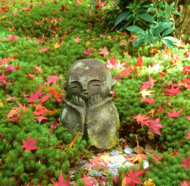 京都の圓光寺