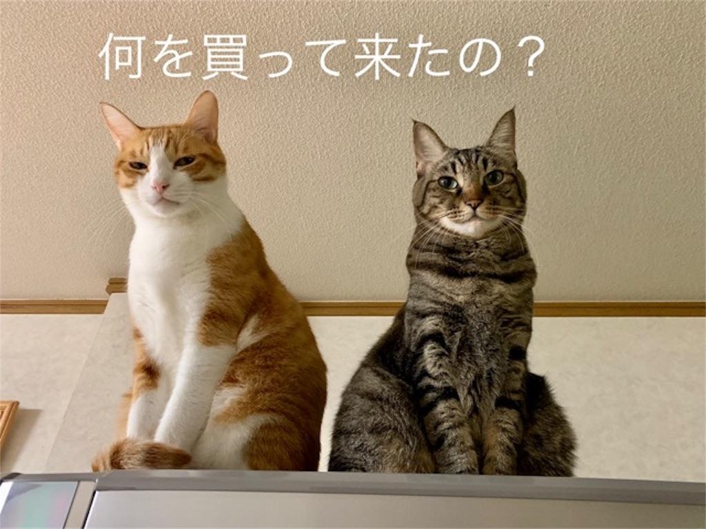 f:id:mitsu5858:20191019170622j:image
