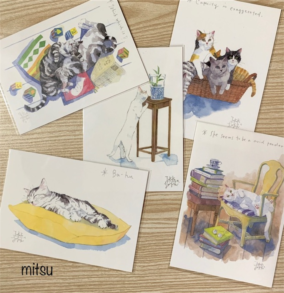 f:id:mitsu5858:20191103095940j:image