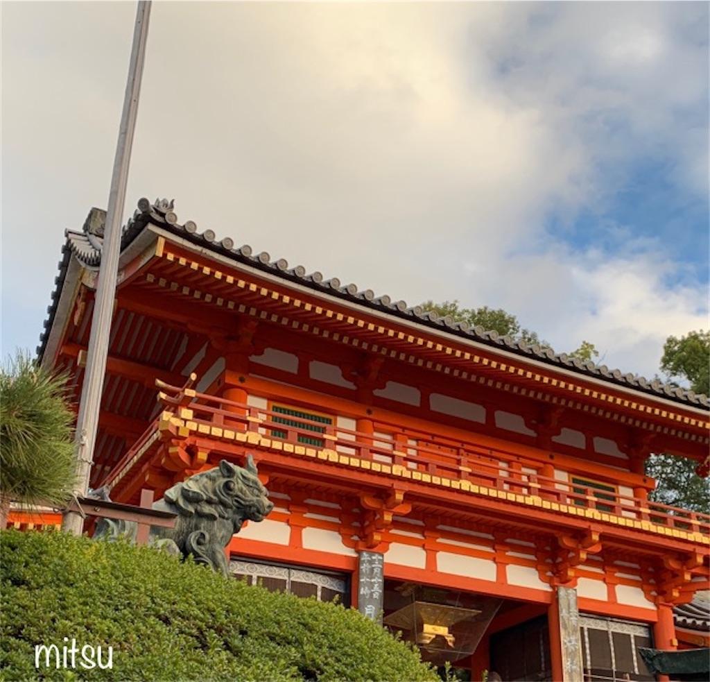 f:id:mitsu5858:20191206130821j:image