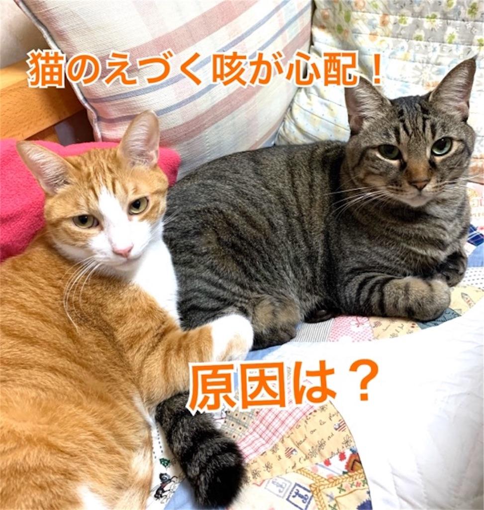 f:id:mitsu5858:20191228145127j:image