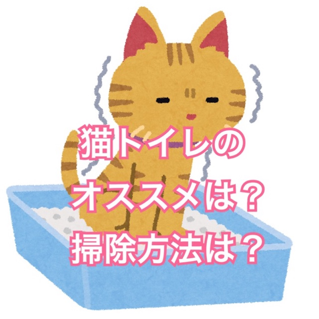 f:id:mitsu5858:20200126141732j:image
