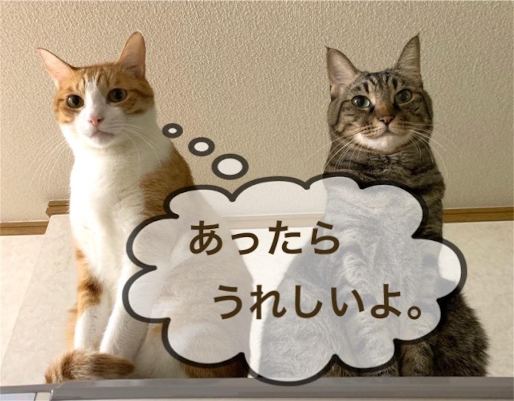 f:id:mitsu5858:20200128114237j:image