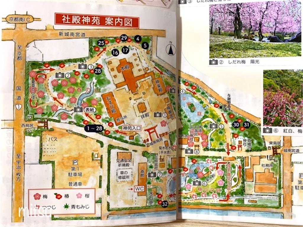 f:id:mitsu5858:20200220172150j:image