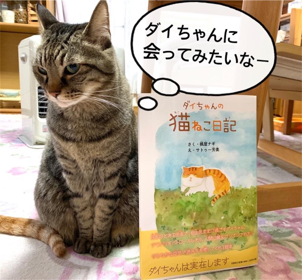 『ダイちゃんの猫ネコ日記』に癒やされて