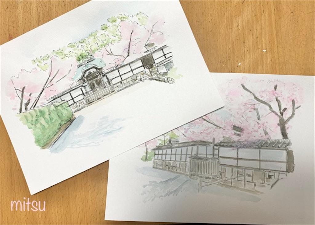 桜の絵の描き方を『水彩画プロの裏ワザ』を参考にしてみた