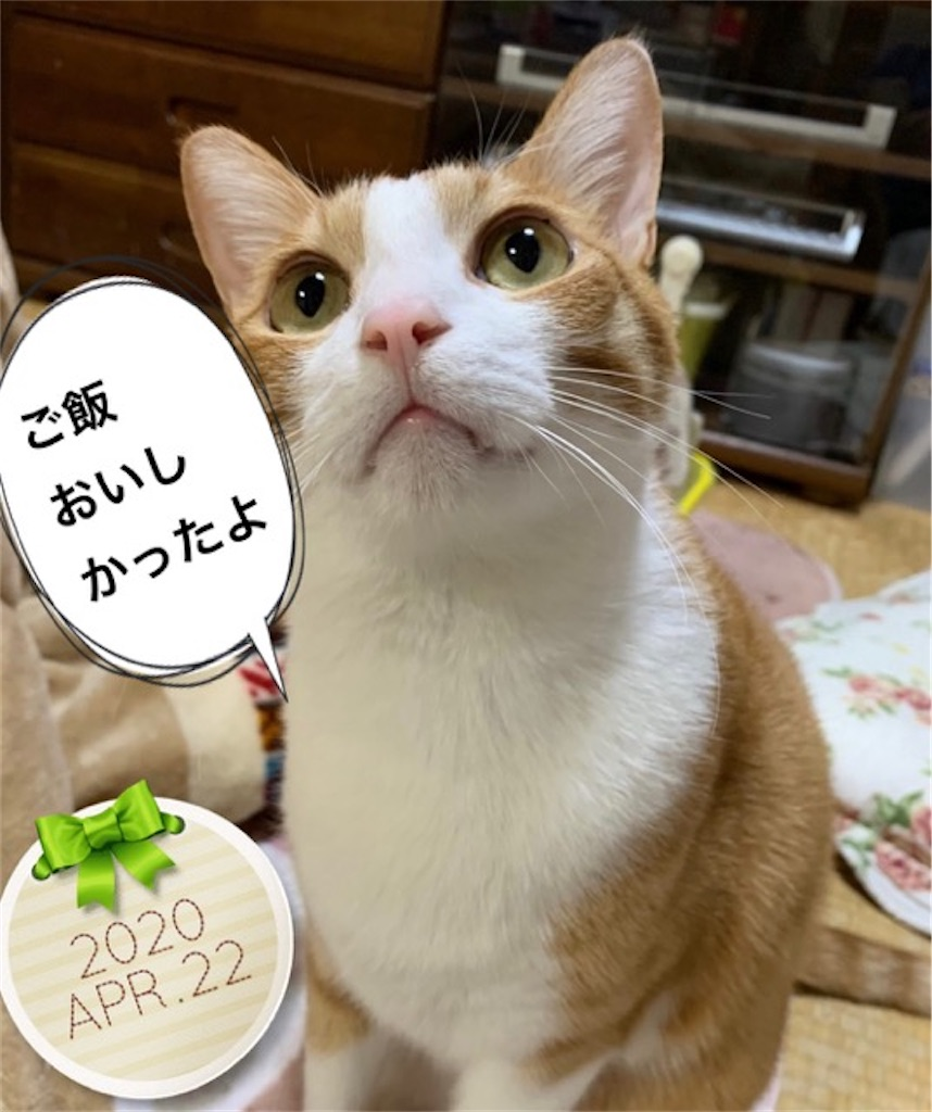 f:id:mitsu5858:20200427174657j:image