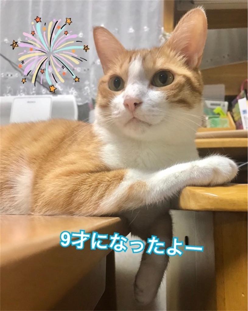 f:id:mitsu5858:20200808090304j:image