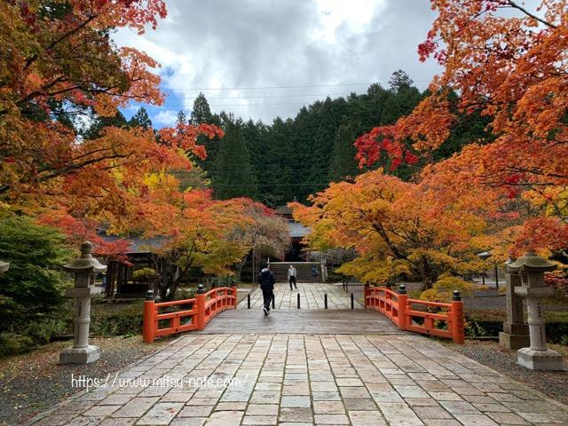 紅葉始まりの高野山・奥の院へ参拝