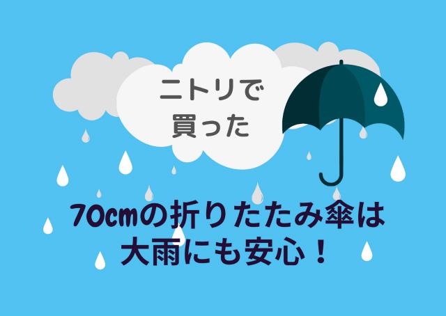 ニトリの折りたたみ傘は大雨にも安心