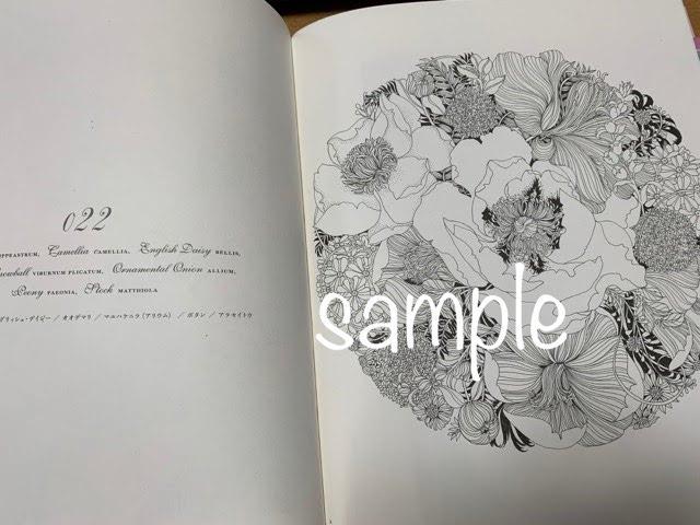 f:id:mitsu5858:20210301235309j:plain