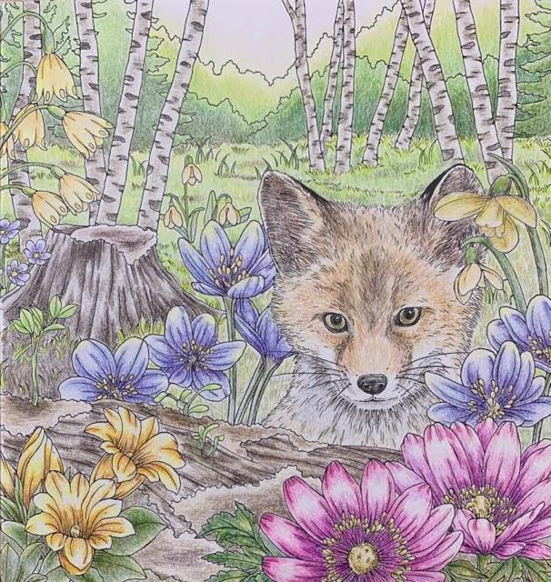 『愛らしい動物たちのシンフォニー』より森の中のキツネの塗り絵