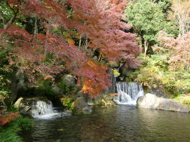 万博記念公園の日本庭園の木漏れ日の滝