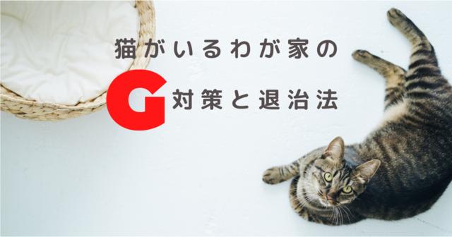 猫がいるわが家のG対策と退治法!オススメの必須アイテムに意外なコレ