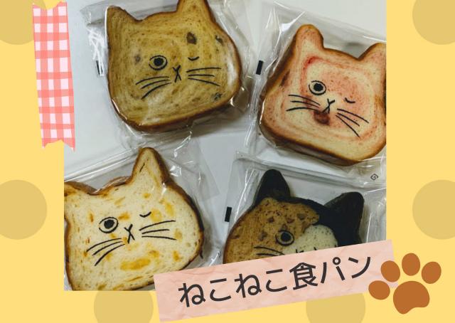 どれがおいしい?【ねこねこ食パン】4種類買って食べた感想