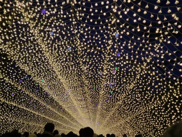 光のトンネル「花回廊」