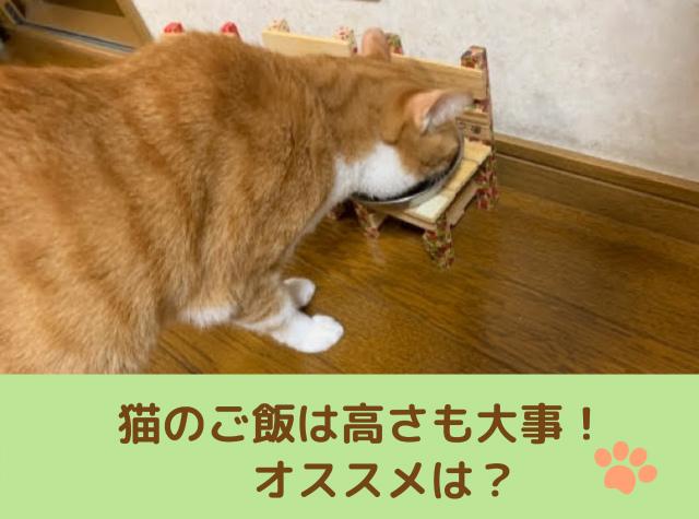 猫がご飯を食べる高さも大事!【ご飯台のオススメ】100均でも作れる
