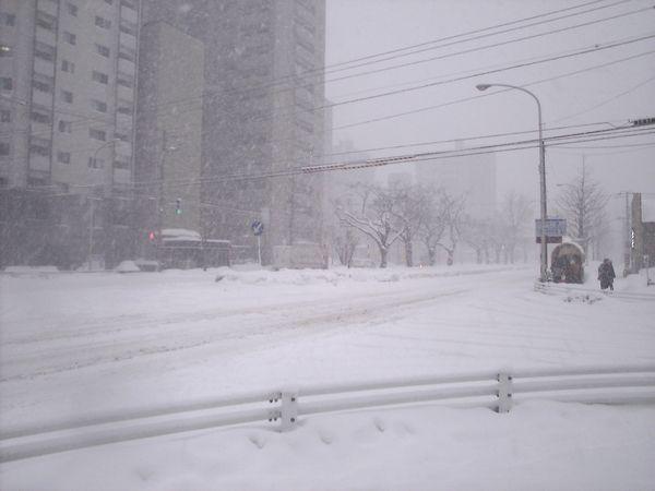 20100206_大通東
