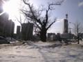 20100227_大通東