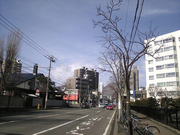 20100402_円山